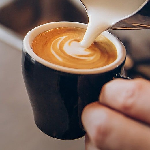 Diedrich Espresso
